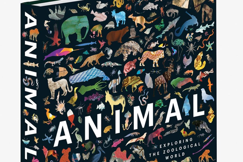 ANIMAL: Exploring the Zoological World - Conjour Book Review - Cover