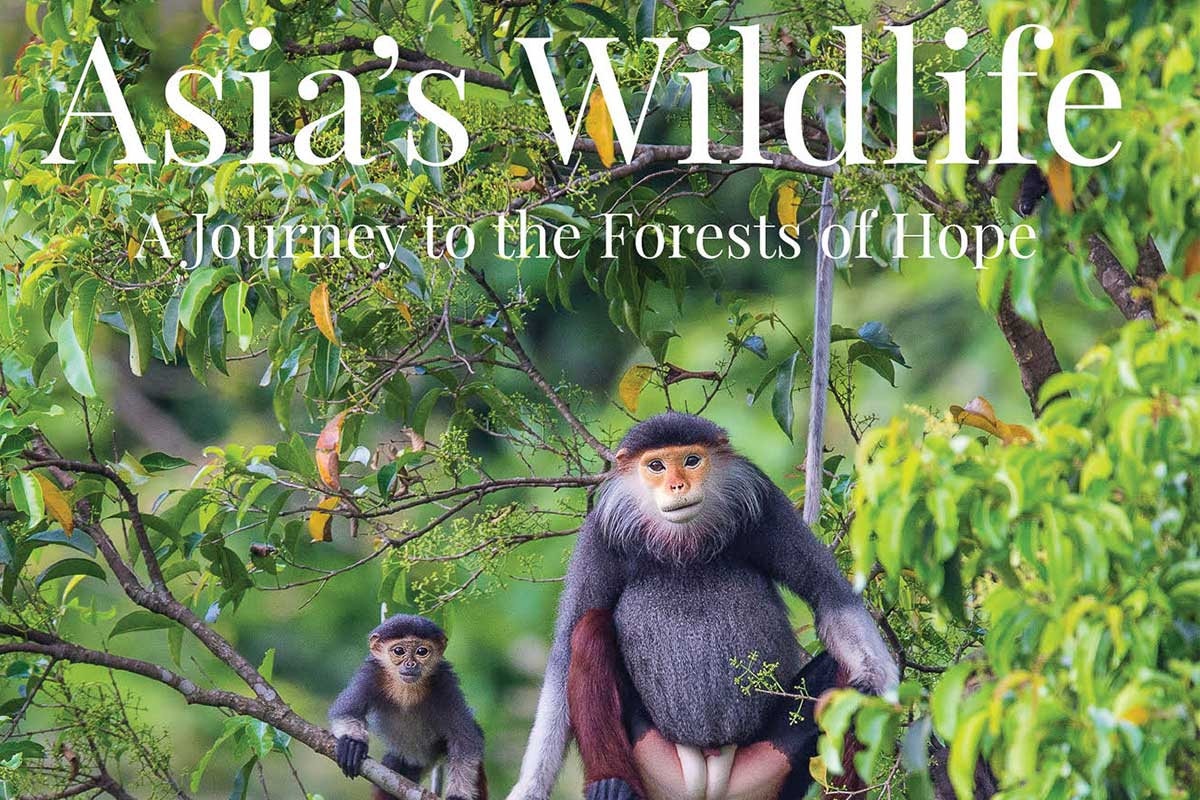 Asias Wildlife - Conjour Book Review - Feature