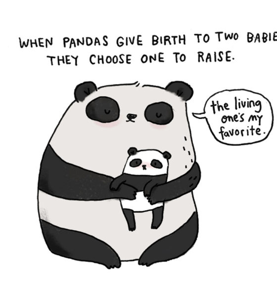 Brooke Barker - SadAnimalFacts - Baby Panda