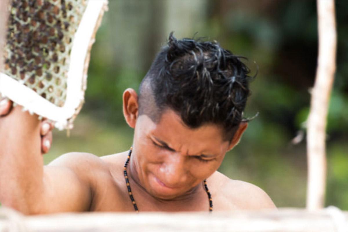 Conjour - Amazon Tribe - Stinging Ants - Deforestation - 0