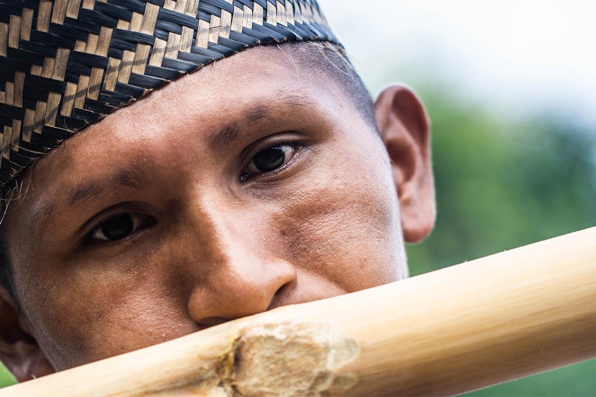 Conjour - Amazon Tribe - Stinging Ants - Deforestation - 2