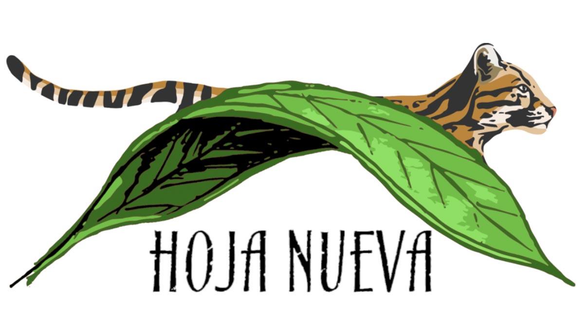Conjour - Hoja Nueva - Logo