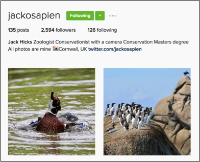 Jack Hicks wildlife photography feature Conjour