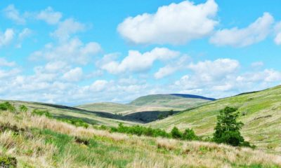 Tarras Valley Scotland Nature Reserve, Conjour, Crowdfunding nature reserve, scotland nature
