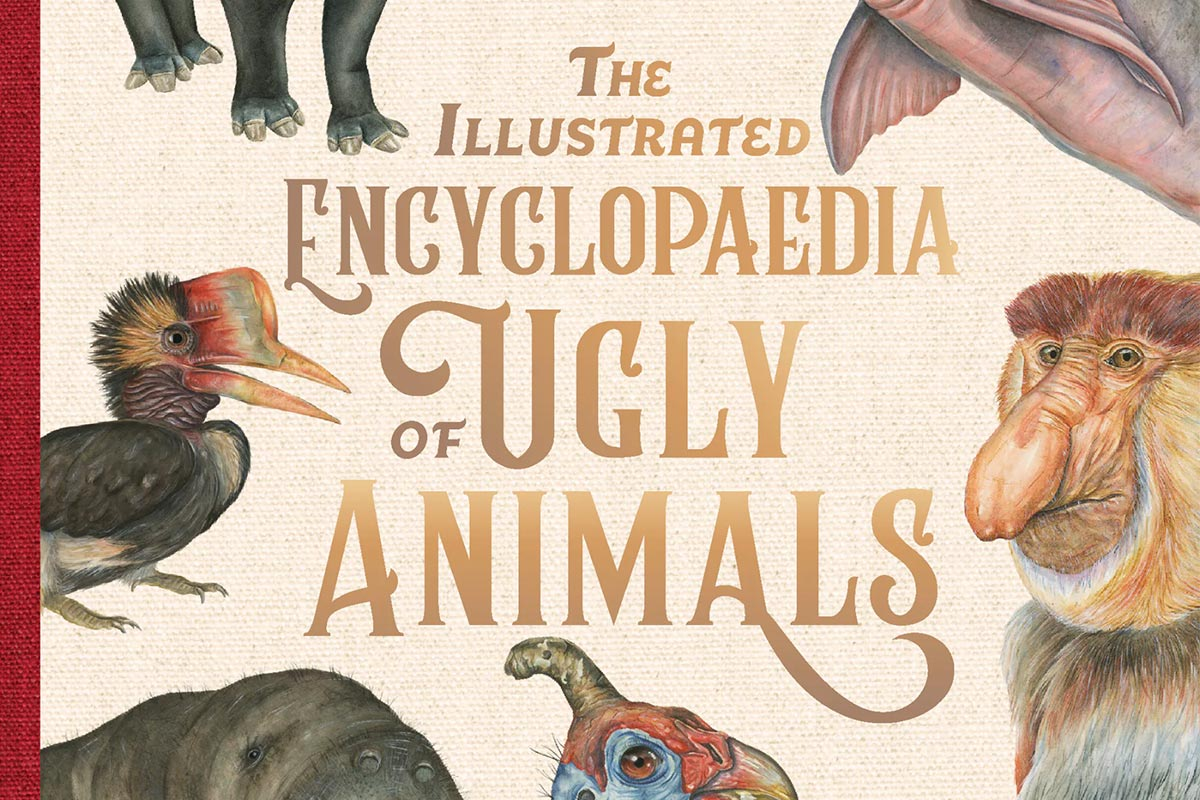 The Illustrated Encyclopaedia of Ugly Animals - Conjour - Book Review - Sami Bayly - 1